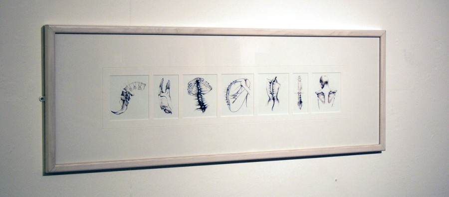 drawings by artist sarah misselbrook